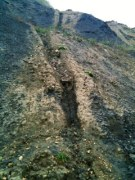 mud tributary