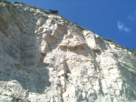 Beer cliff face