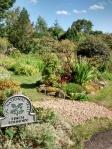 finch garden