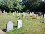 finch graveyard